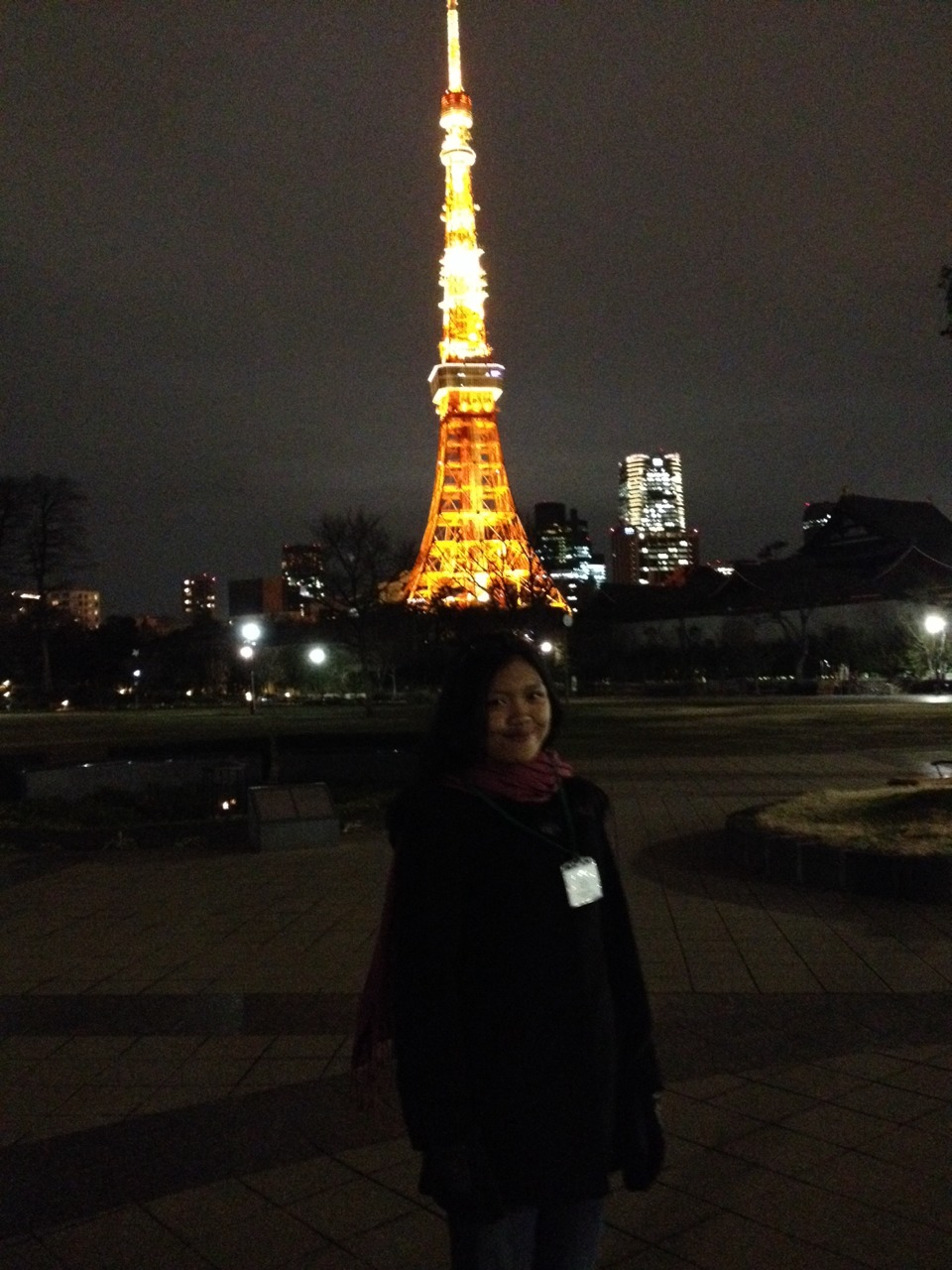 The Iconic Tokyo Tower