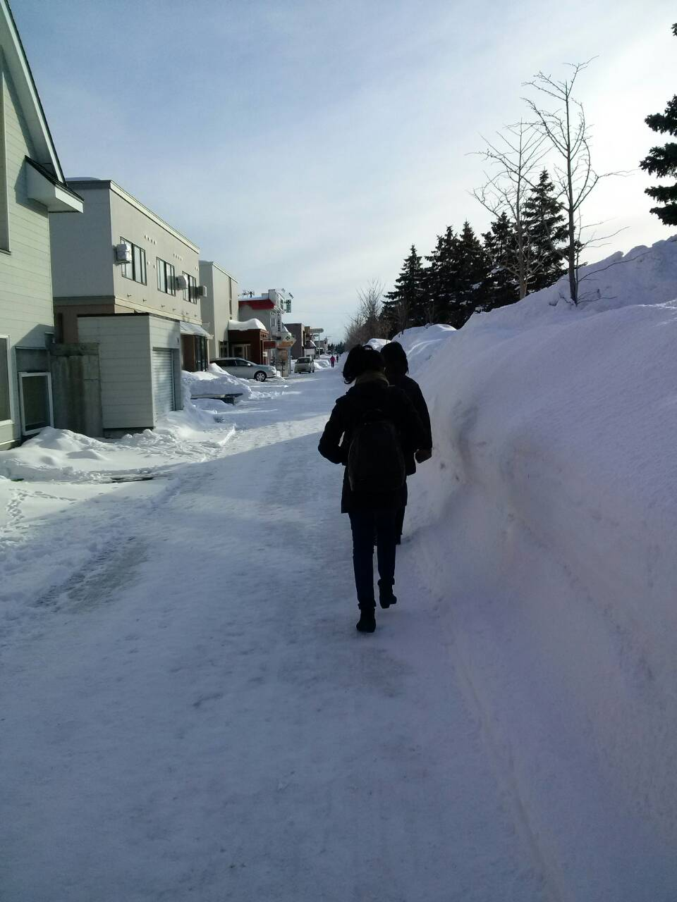 Medan yang harus kami tempuh setelah turun dari bus: salju!